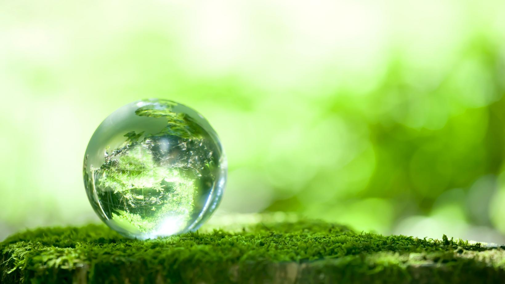 CSR Environmental